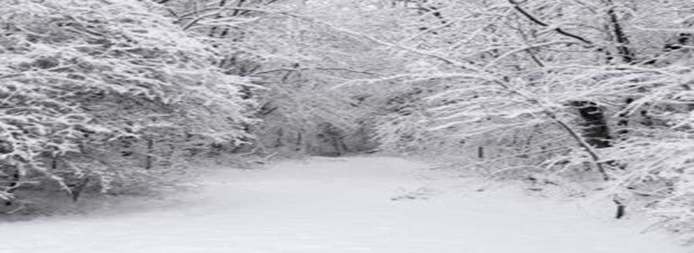 Winter ice damage