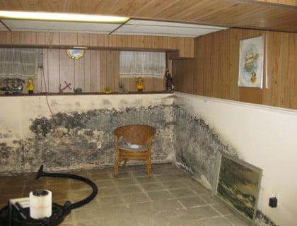 basement flood long island ny